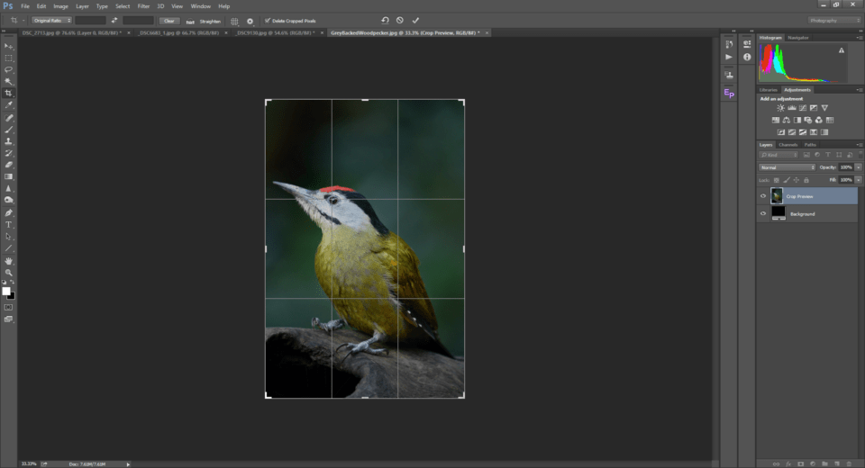 The Rule of Thirds in Photoshop