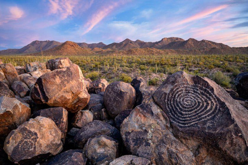 Saguaro Trees. Image captured with Nikon Z 14-30mm f/4 S lens.