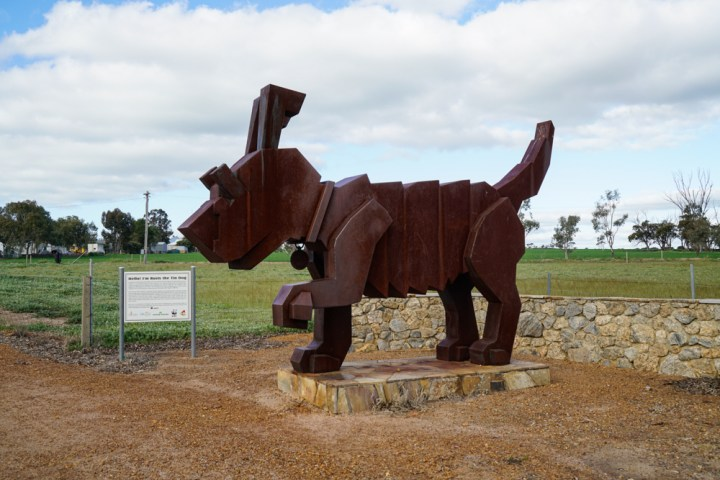 Tin Dog, Western Australia (1 of 1)