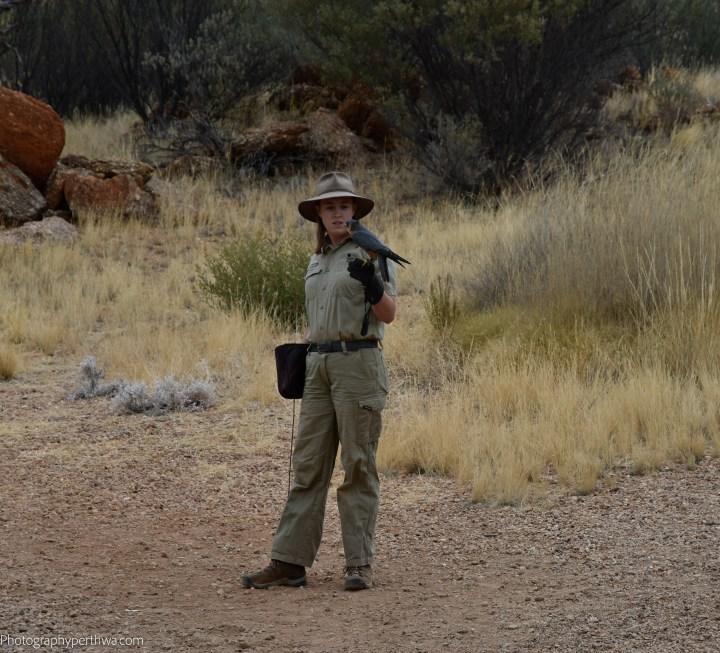 Alice Springs Desert Park - the relationship2 (1 of 1)