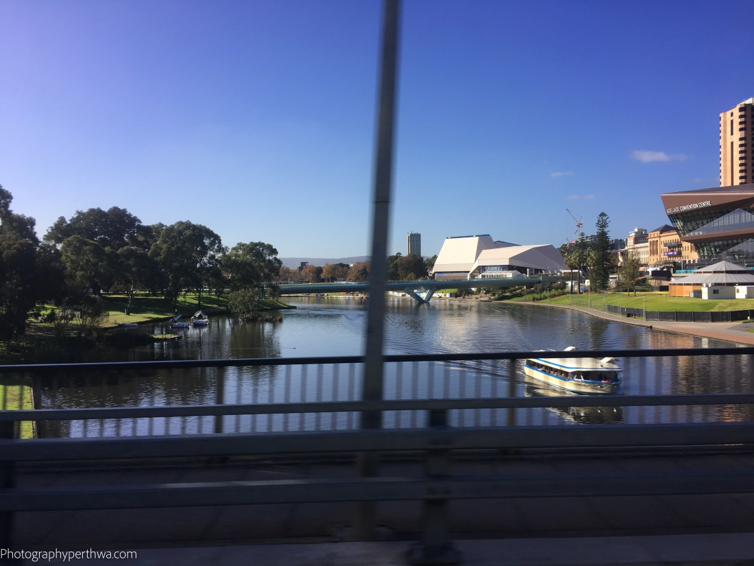 crossing the Torrens (1 of 1)