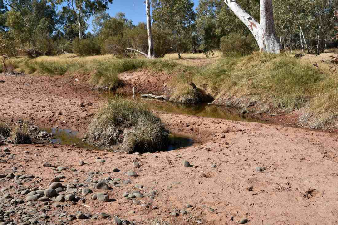 Finke River - some water