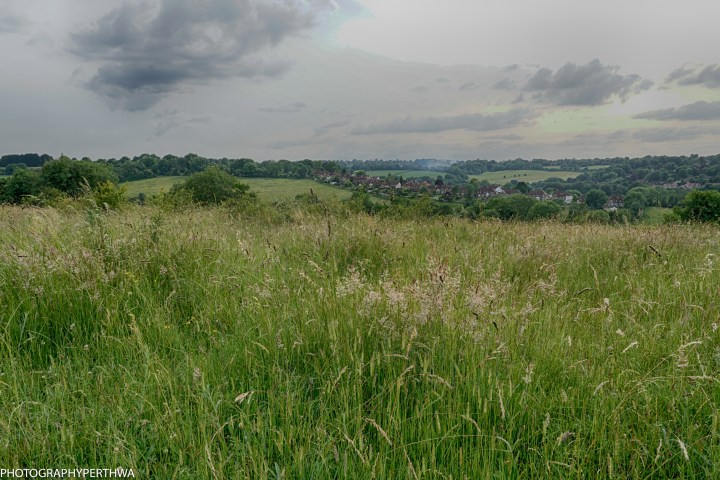 Fox to Farthing downs (4 of 8)