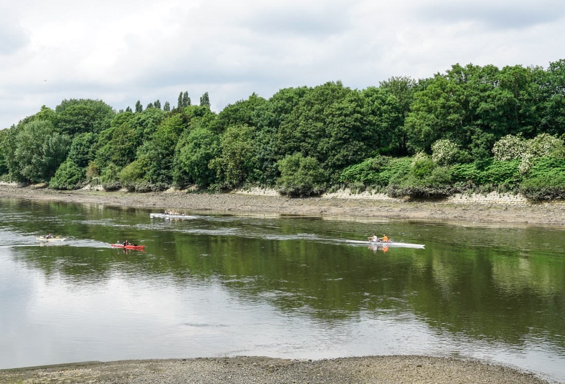 rowing on the Thames (1 of 1)