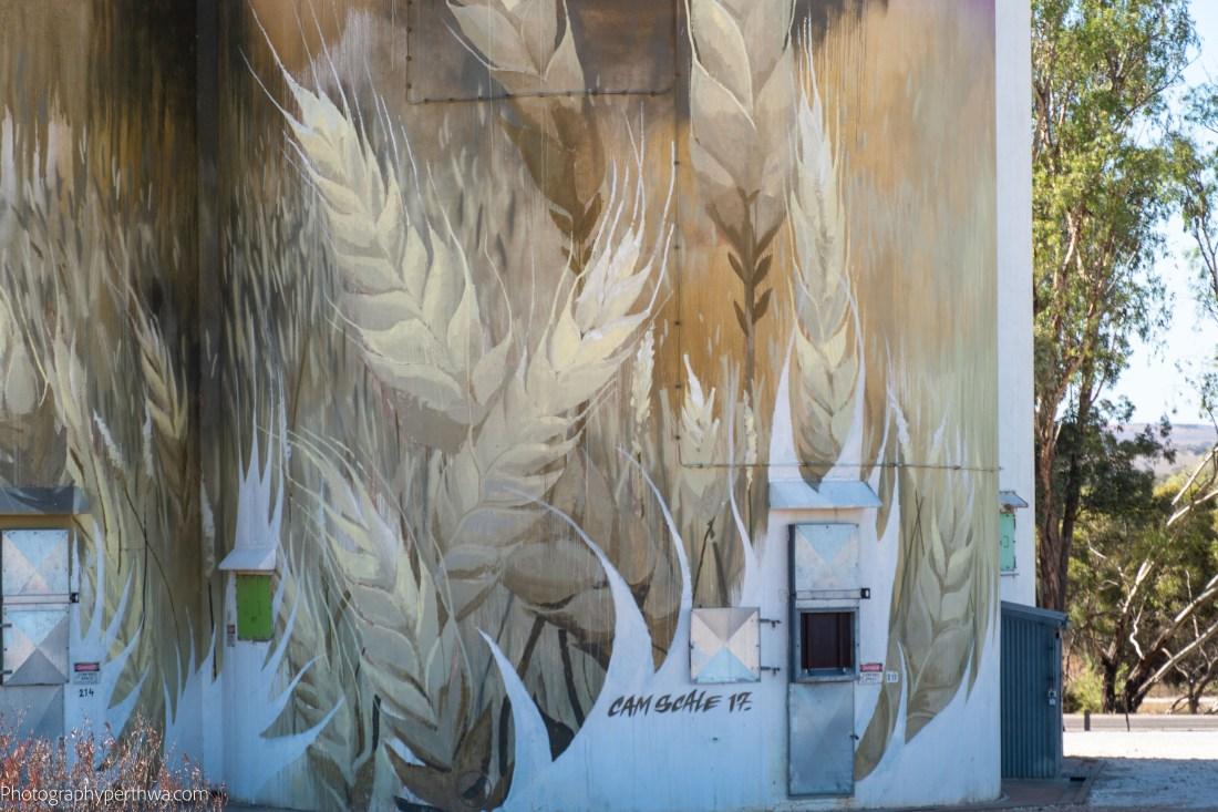 Kimba silo art3 (1 of 1).jpg