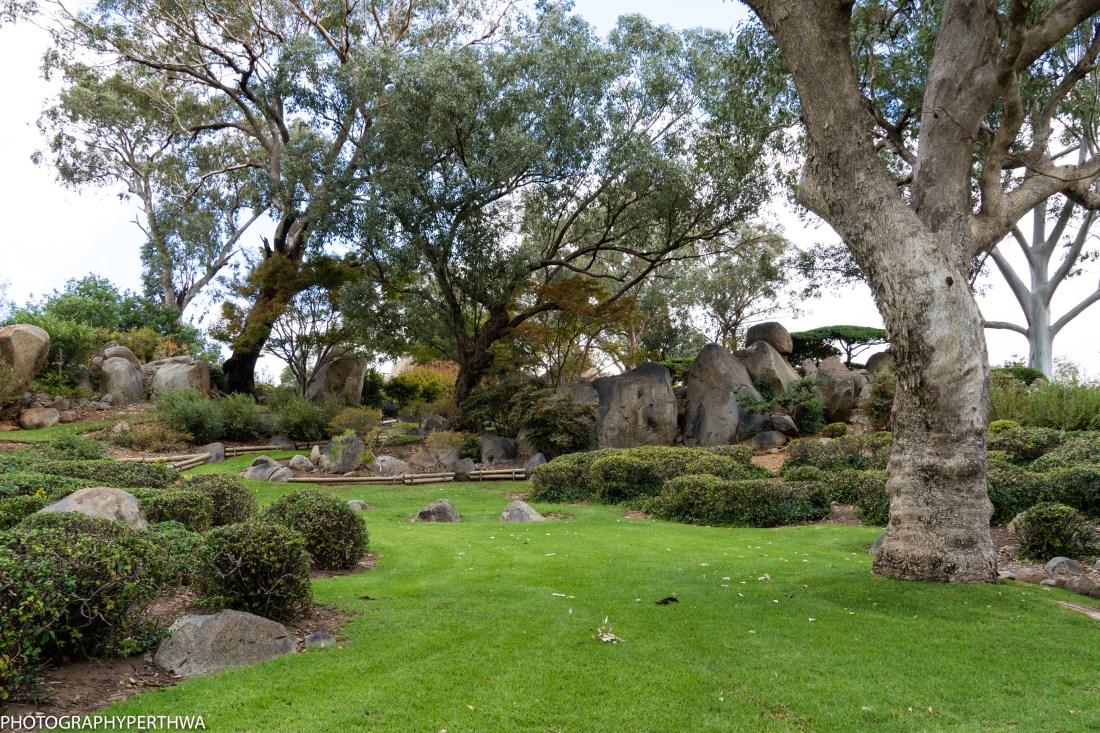 Japanese Garden 3 (1 of 1).jpg