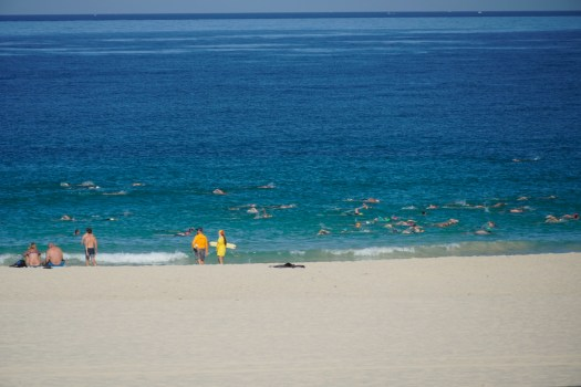 swimmers on their way - 1.jpeg