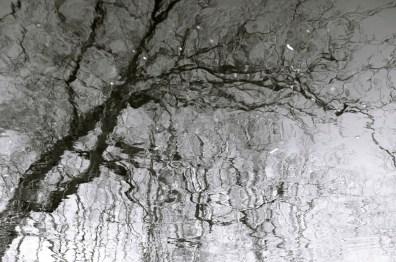 ipswich-reflection-4