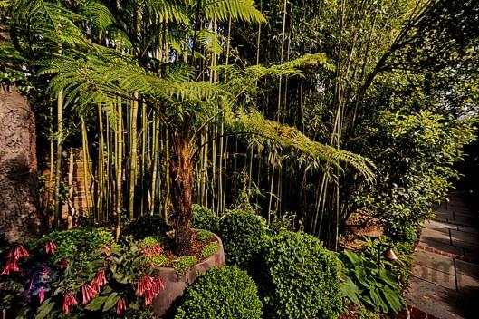 Georgetown_Garden_Plank_08