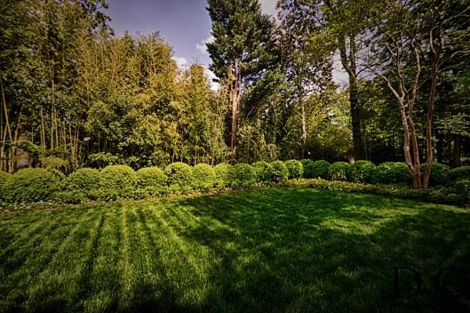 Georgetown_Garden_Plank_09