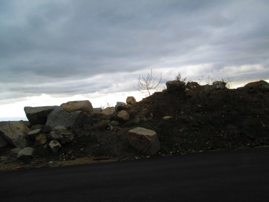 Brush and boulders at a turnout point.