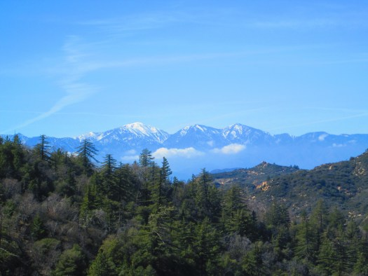 The view of Mount Baldy is spotted on a walk in the forest of the San Bernardino Mountains.