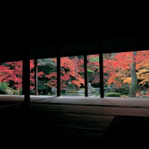 蓮華寺 © Tadayuki Naitoh