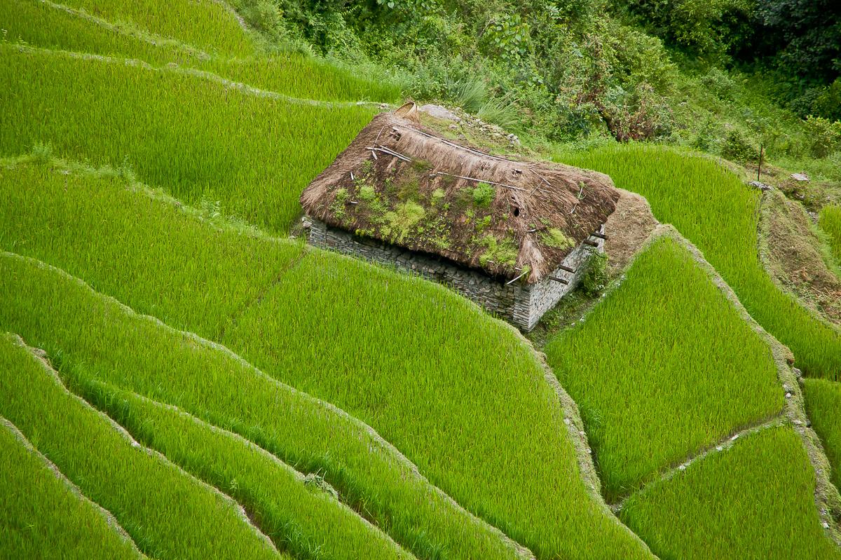 nepal-photography-2010-a13