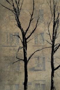 Фото на стену для оформления интерьеров