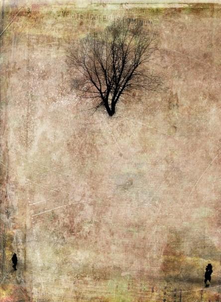 Фотографии на стены в интерьерах