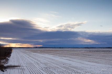 imcc_sunset field winter-0037