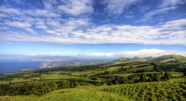 In the mix with green and blue (Azores, São Miguel 2011)