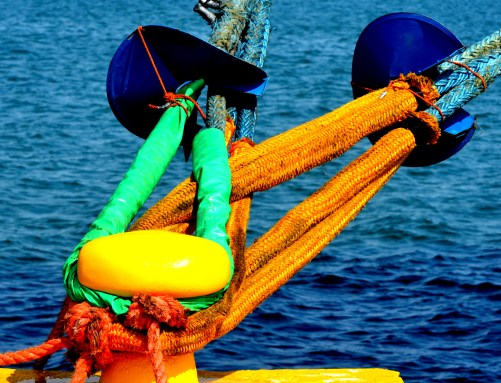 Colorful Tie Down by Weston Wishart