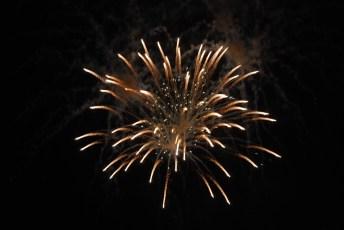 Fireworks 3 by Liz Sette