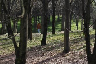 Luciano Perciaccante, Parco Monte Stella, Milano 2017