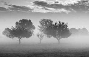 Marco Rilli 008, La nebbia, periferia milanese