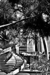 Silvia Questore 015, Portello e City Life tra Architettura, Vita e Natura