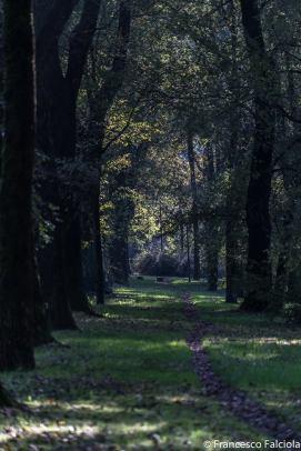 viale parco lambro
