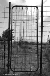 18 cancello orti via baroni