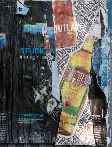 rotella studio 8783