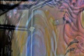 silvia questore graffiti strappati 06