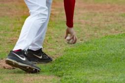 baseball ph gianfranco bellini 9729