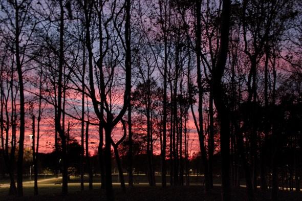 tramonto al forlanini daniela loconte foto 6