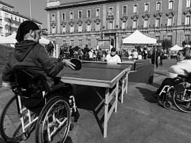 Paolo Pacecca Corsa Ping Pong 1