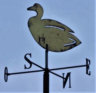 DSCN3996_Saint-Valéry sur Somme(F) (2) (Copier)