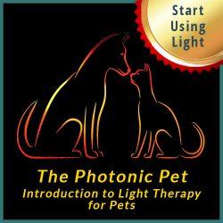 Photonic Pet Start Using Light