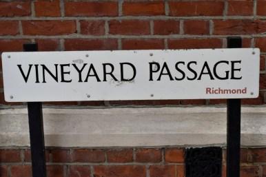 vineyard_passage_1_1500