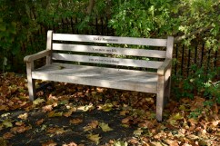 orleans_bench_1_3_1500