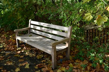 orleans_bench_1_4_1500