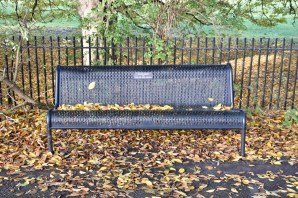 orleans_bench_3_1_1500