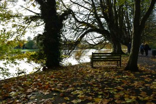 orleans_bench_4_2_1500