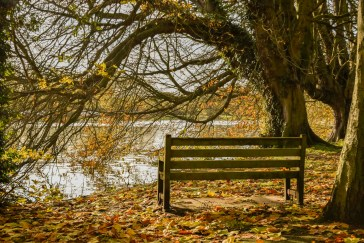 orleans_bench_4_4_glow_1500_