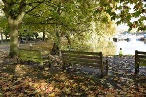 orleans_gardens_31_1500