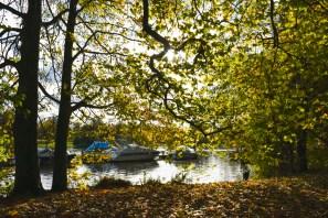 orleans_gardens_3_1500