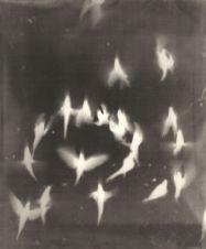 adam_fuss_my_ghost_02