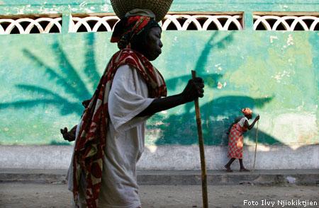 Ilvy wint prijs bij National Geographic