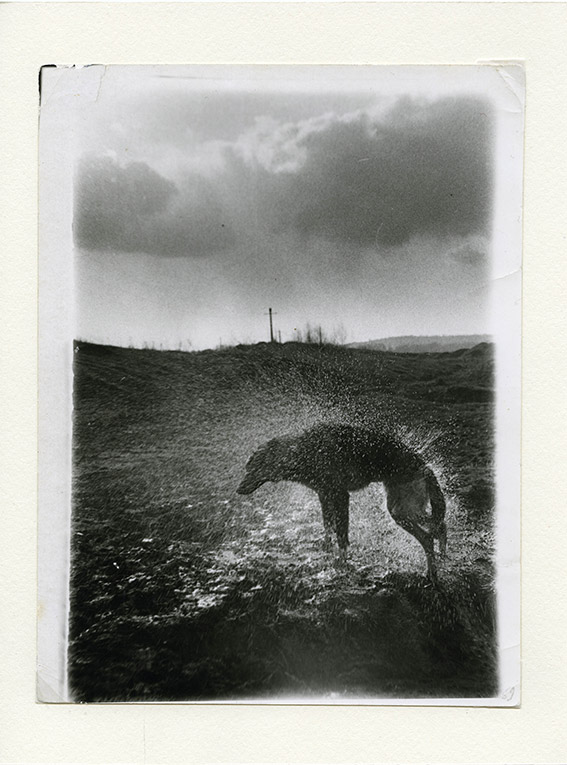 Untitled, from the series Black Archive, 1968-79 © Boris Mikhailov, courtesy CAMERA Centro Italiano per la Fotografia