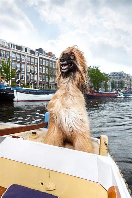 Oproep inzenden plan foto-opdrachten Stadsarchief Amsterdam
