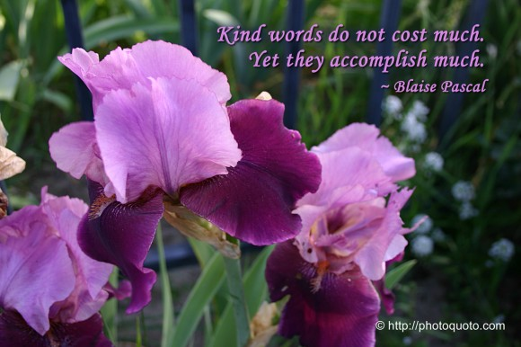 Kind words do not cost much. Yet they accomplish much. ~  Blaise Pascal