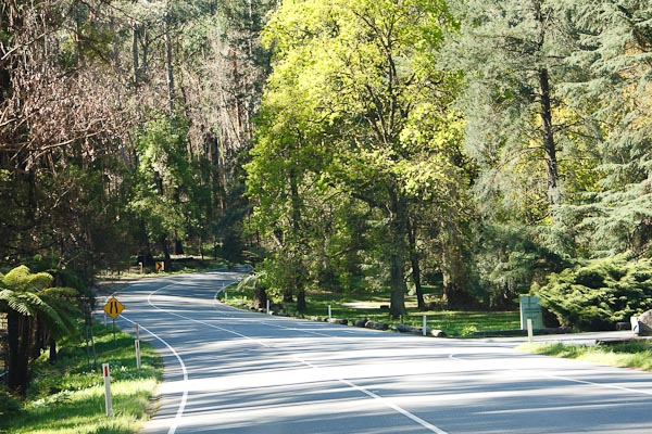 These roads are popular with motorcyclists.